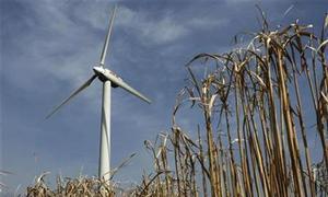 Wind, solar do not harm power grid reliability: draft U.S. study