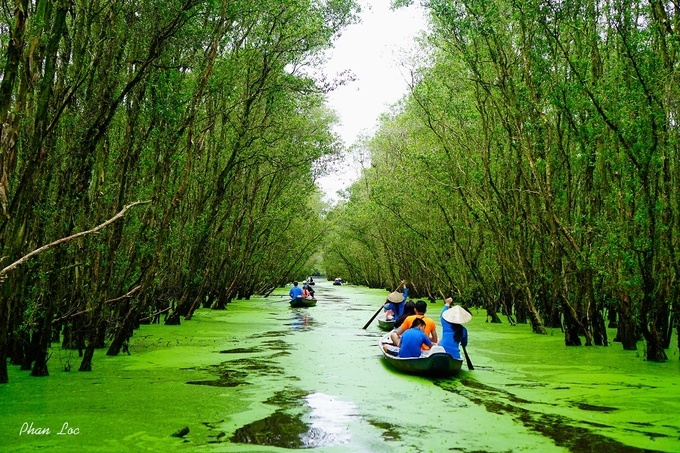 this-hidden-emerald-lake-will-leave-you-stunned-in-vietnams-mekong-delta-5