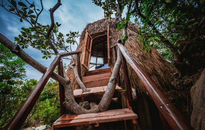 giant-birds-nests-offer-the-perfect-place-to-roost-by-the-sea-in-central-vietnam-2