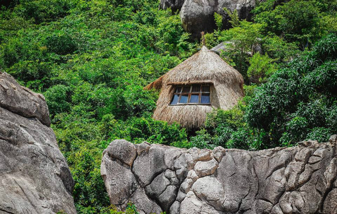 giant-birds-nests-offer-the-perfect-place-to-roost-by-the-sea-in-central-vietnam-3