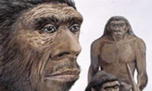 New gene study rewrites Neanderthal history