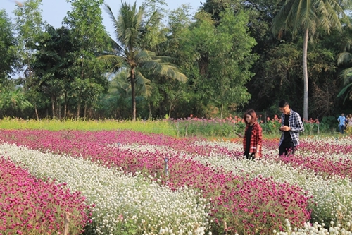 from-river-markets-to-tropical-orchards-take-a-taste-of-vietnams-tien-giang-3