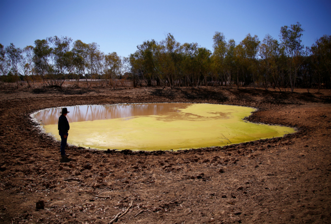 Farmer Tony Jackson inspects a dam containing stagnant water on his property located near Deadmans Creek on the outskirts of the outback town of Stonehenge, in Queensland, Australia, August 13, 2017. Photo by Reuters/David Gray