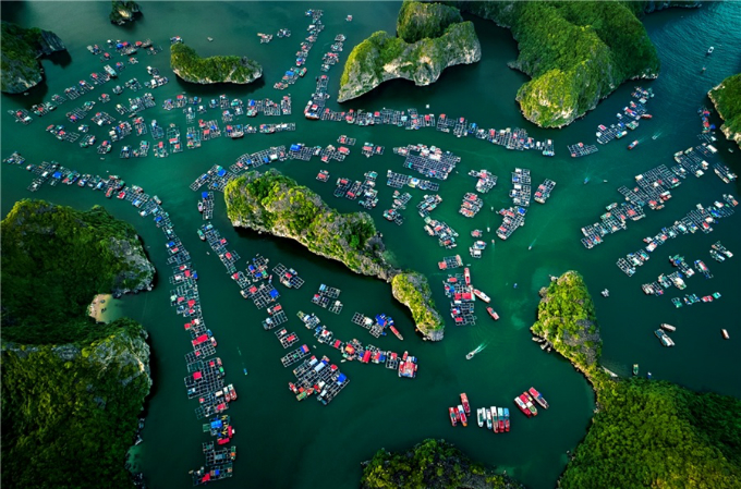 Located in the east of Cat Ba Island, the 7,000-hectare wide bay features around 400 islands of all shapes. From the center of Cat Ba Island, go to Ben Beo, where you can buy tickets and hire a boat or a motorboat. The floating village is packed with boats, which make up a spectacular view from above.