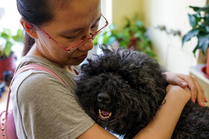 pet-friendly-china-acupuncturist-gets-tails-wagging-again-2