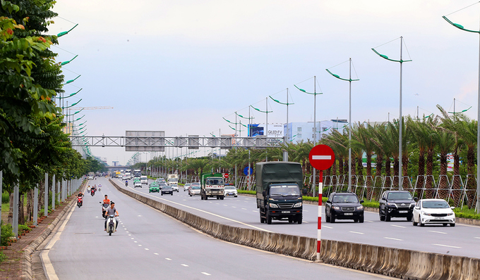 thousands-of-new-trees-line-hanoi-street-as-city-shoots-for-a-million-2