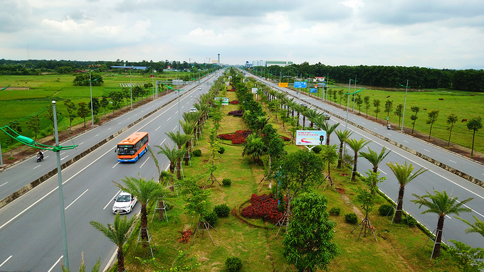 thousands-of-new-trees-line-hanoi-street-as-city-shoots-for-a-million-4