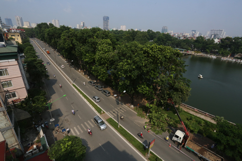 hanoi-to-remove-another-130-trees-to-make-way-for-metro-line-1
