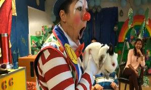 'Good clowns' look for last laugh in clown culture war