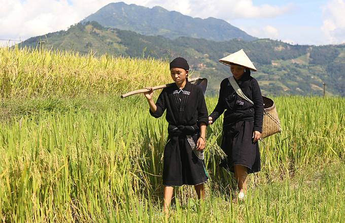 ethnic-group-keeps-the-fire-stoked-for-rice-flakes-in-northern-vietnam