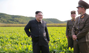 White House says 'not the time to talk' with Pyongyang
