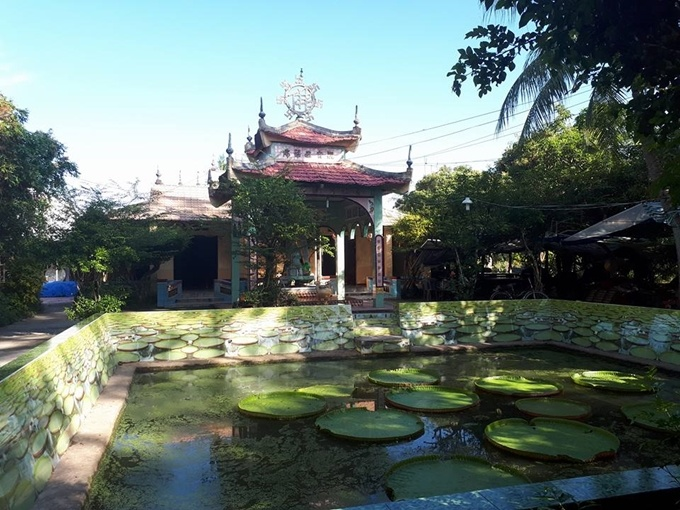 float-away-on-a-lotus-leaf-at-this-pagoda-in-southern-vietnam