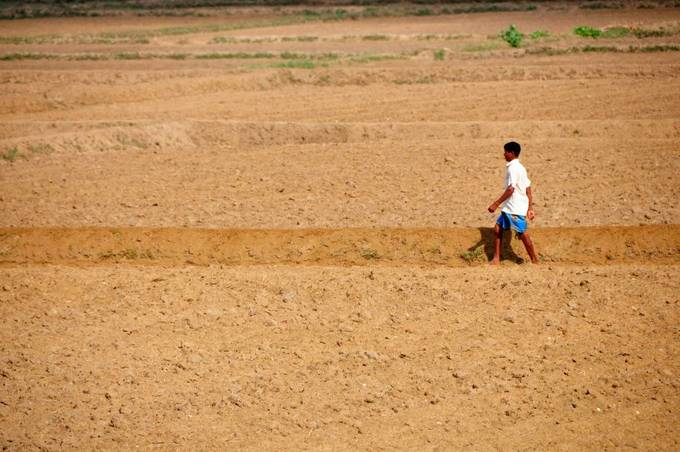 Drought-hit and hungry Sri Lankans struggle for a harvest – or work