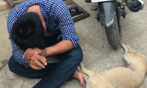 Dog thief killed during fight with angry villagers in Hanoi