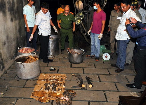 Police raid uncovers tiger, rare monkeys being boiled down for medicine in southern Vietnam