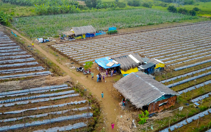 in-saigons-backyard-migrants-eke-out-a-living-on-the-edge-of-civilization