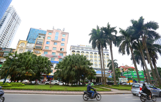 most-beautiful-street-divider-in-vietnam-to-be-hacked-back-to-make-way-for-traffic-2