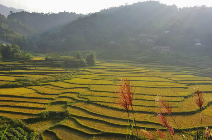 six-destinations-in-vietnam-that-emerged-as-tourist-magnets-in-2017-2
