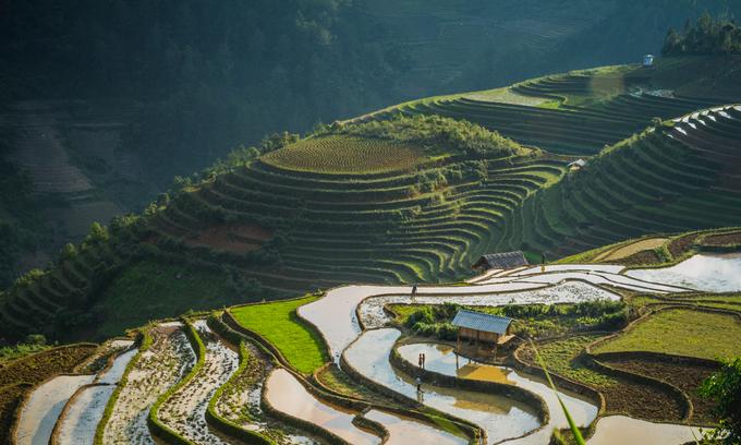 Vietnam's emerald mountain gem named among world's most beautiful