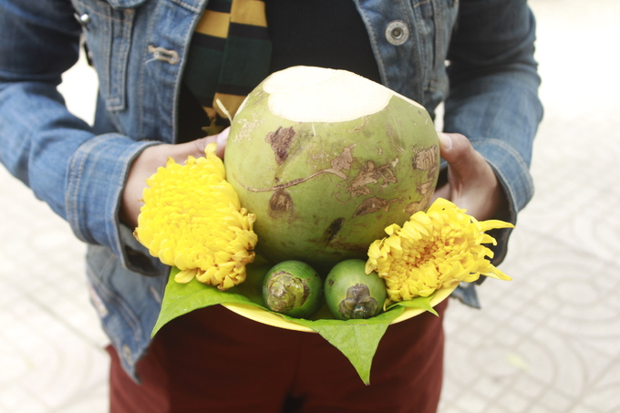 These are what they offer the goddesses: coconut, areca nuts, and chrysanthemum flowers.