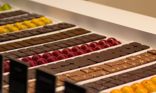 Chocolate could go extinct by 2050