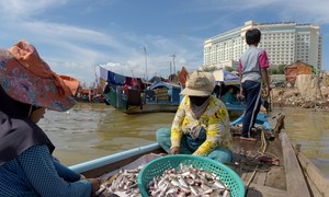Power stacked against SE Asia's poor as China dams Mekong