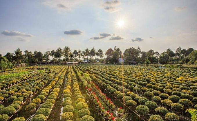 Photo by Lam Phu Nghiem