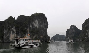 Vietnam named in top 15 most Instagrammed global cruise destinations