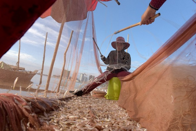 Women removing fish from a net on their boat in the Mekong river in Kandal province. Cambodian fisherman Sles Hiet lives at the mercy of the Mekong: a massive river that feeds tens of millions but is under threat from the Chinese dams cementing Beijings physical -- and diplomatic -- control over its Southeast Asian neighbours. Photo by AFP/Tang Chhin Sothy