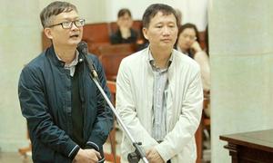 Runaway bigwig's second trial suspended pending verification in Vietnam