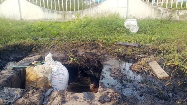 Raw sewage from PAK Vietnam flows into the environment. Photo courtesy of Dong Nais online news portal.