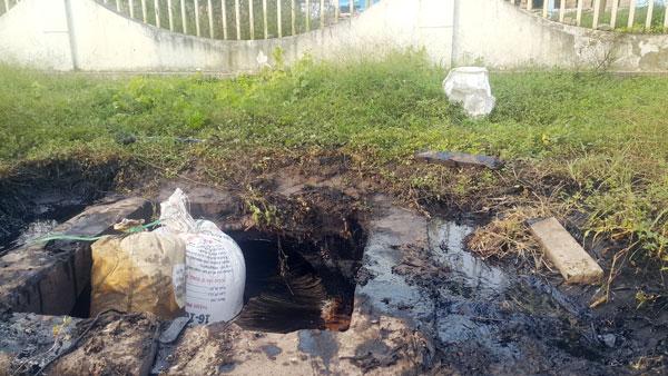 Raw sewage from PAK Vietnam flows into the environment. Photo courtesy ofDong Nais online news portal.