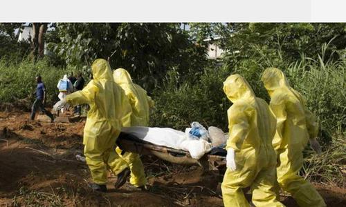 Lassa fever kills 21 in Nigeria: health officials
