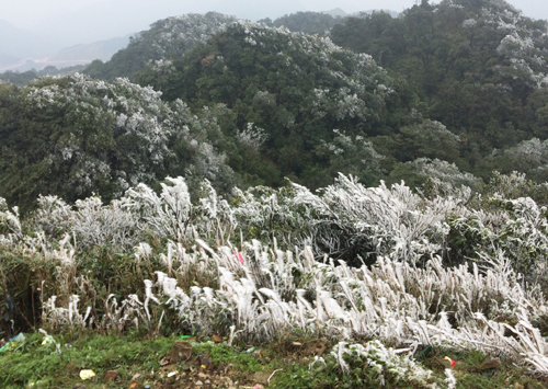 Severe cold snap to grip northern Vietnam over coming week