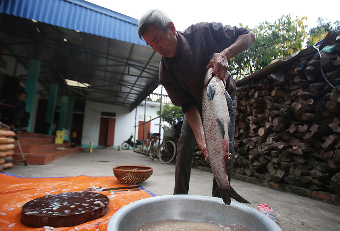 A family in Dai Hoang Village usually cooks hundreds of pots each day. We only use black carps that are more than three years old and weigh over 3 kilograms. Their taste is the best, says this man.