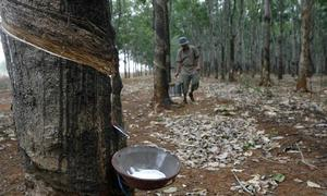 Vietnam raises $57.7 mln in lackluster rubber group IPO