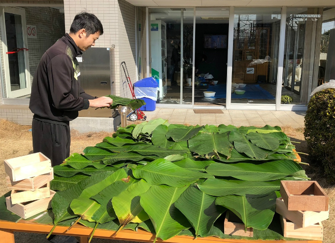 In order to make it as traditional as it could, the company where they work has bought 140 dong leaves for making banh chung from Vietnam and banana leaves for banh tet from Japans Okinawa Island.