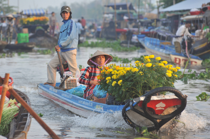 A boat carries baskets of chrysanthemums at the market filled with water hyacinth. Southern Vietnamese love yellow for the Lunar New Year. The bright yellow ochna blossoms are usually the staple, but they are happy with any cheaper options.
