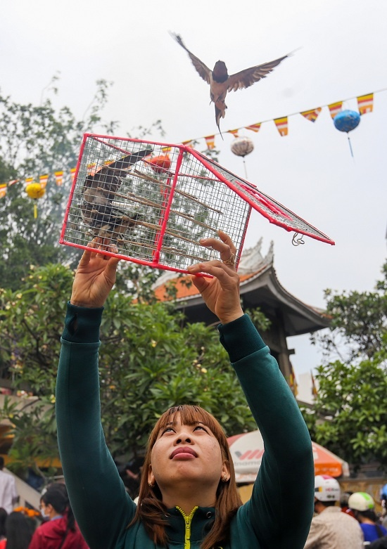 Releasing animals from captivity is an important custom for people in Saigon on the first day of the new year. Its a way to express ones respect for life and freedom.