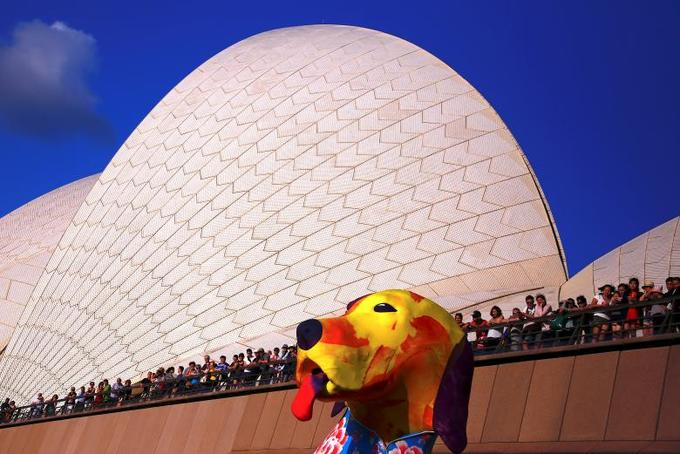 Spectators look at a large dog-shaped lantern as part of celebrations in Sydney, Australia, February 16, 2018. Photo by Reuters/David Gray