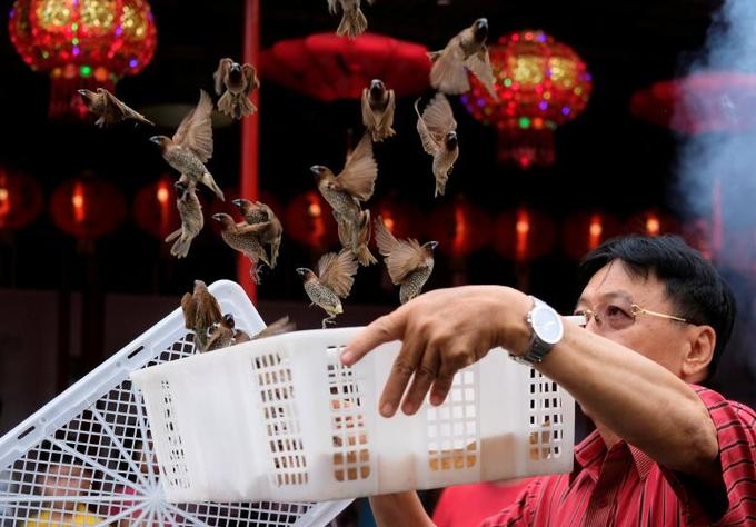 A man releases birds, which is believed to bring good luck, at a temple in Chinatown in Jakarta, Indonesia, February 16, 2018. Photo by Reuters/Beawiharta