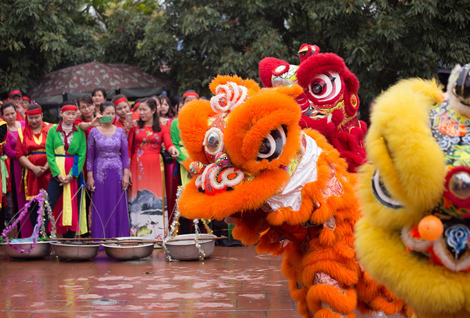 The traditional yet controversial pig slaughter festival returned to Nem Thuong Village in the northern province of Bac Ninh on Wednesday. The villages most important festival of the year began with a lion dance at the courtyard while the women prepared water to bath the pigs in.