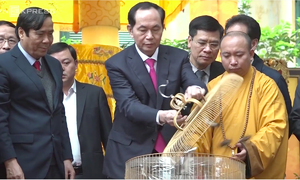 Vietnam's president releases birds for peaceful new year