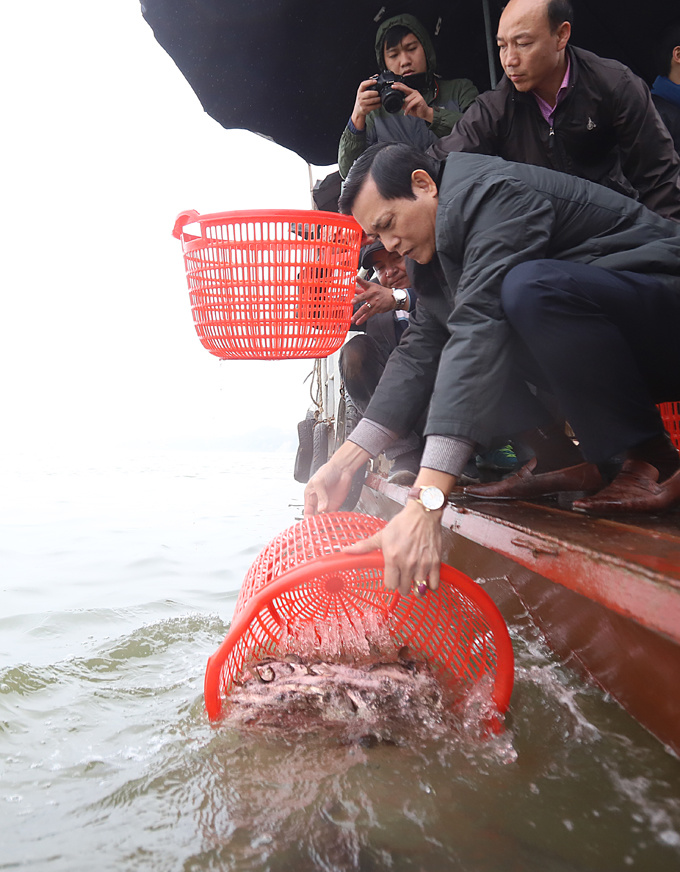 Upon being released, the fish received blessings for a safe journey to freedom by the people and the monks, headed by the elder monk Thich Chan Quang.