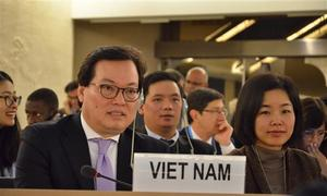 Vietnam will work non-stop to protect human rights: UN ambassador