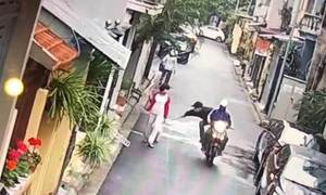 Video shows Hanoi woman toppled as her dog is snatched in broad daylight