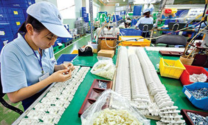Vietnam named 2nd best destination for Japanese firms wishing to expand abroad: survey