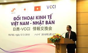 Vietnam, Japan look to boost ties in tourism, education