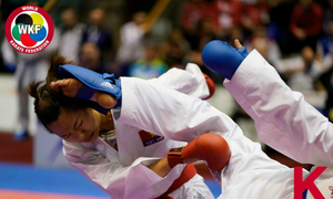 Vietnamese fighter wins bronze at top global karate tournament