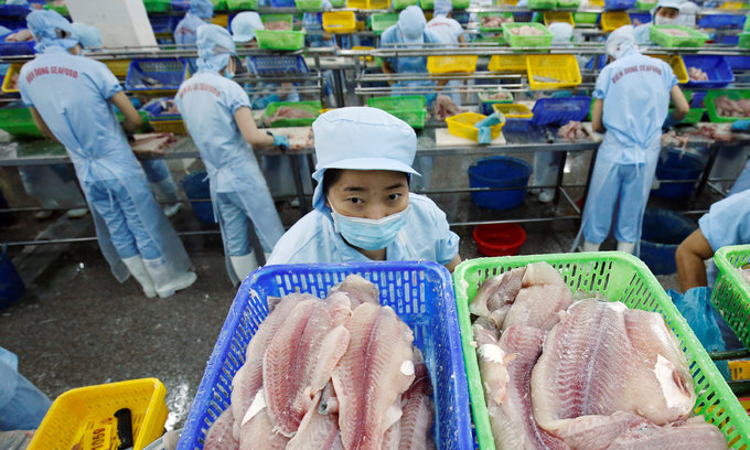 Vietnam petitions US to re-evaluate catfish import restrictions